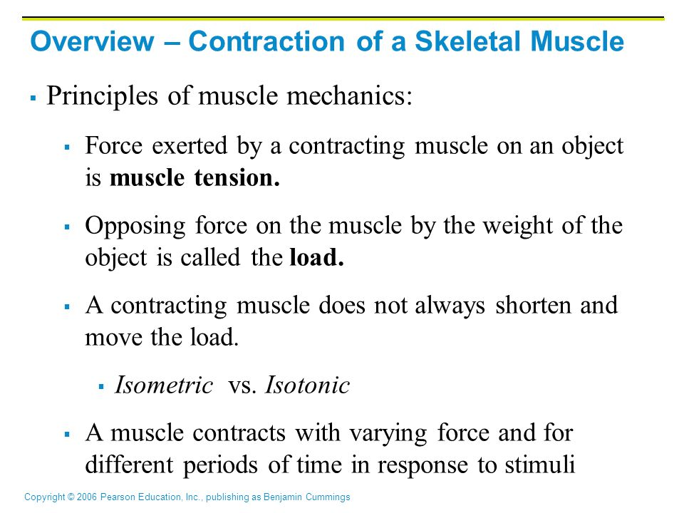 Copyright © 2006 Pearson Education, Inc., publishing as Benjamin Cummings Overview – Contraction of a Skeletal Muscle  Principles of muscle mechanics