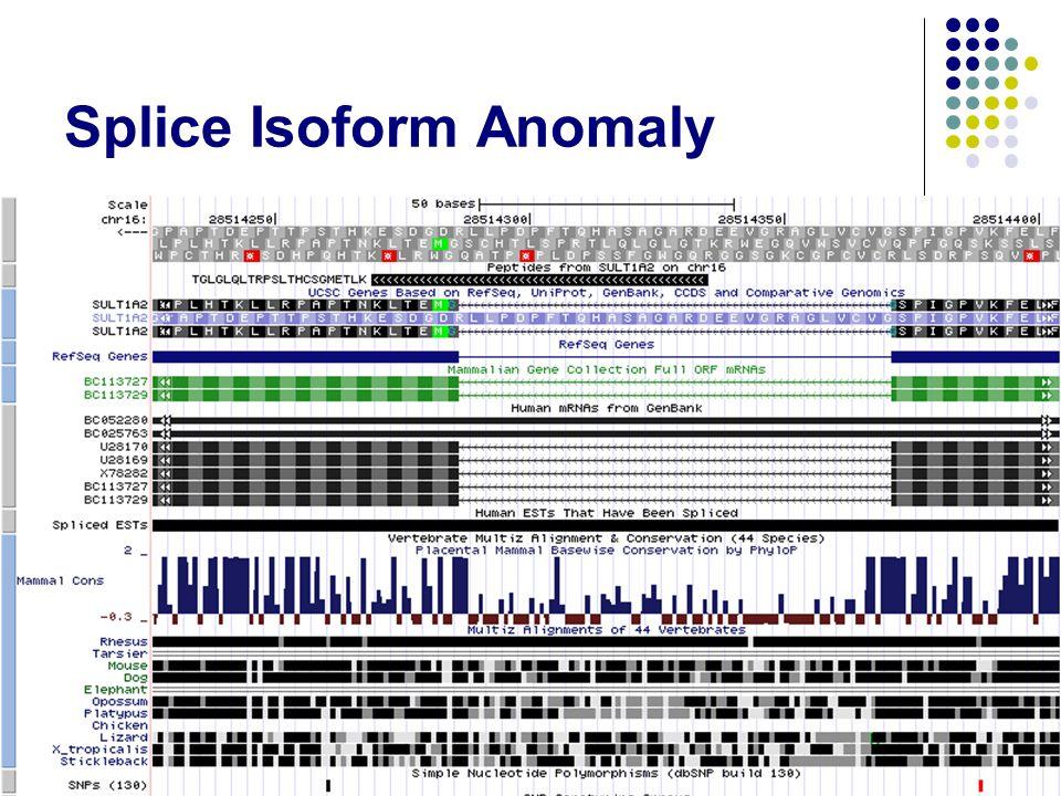 Splice Isoform Anomaly 16