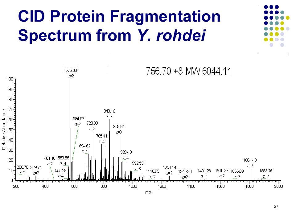 27 CID Protein Fragmentation Spectrum from Y. rohdei