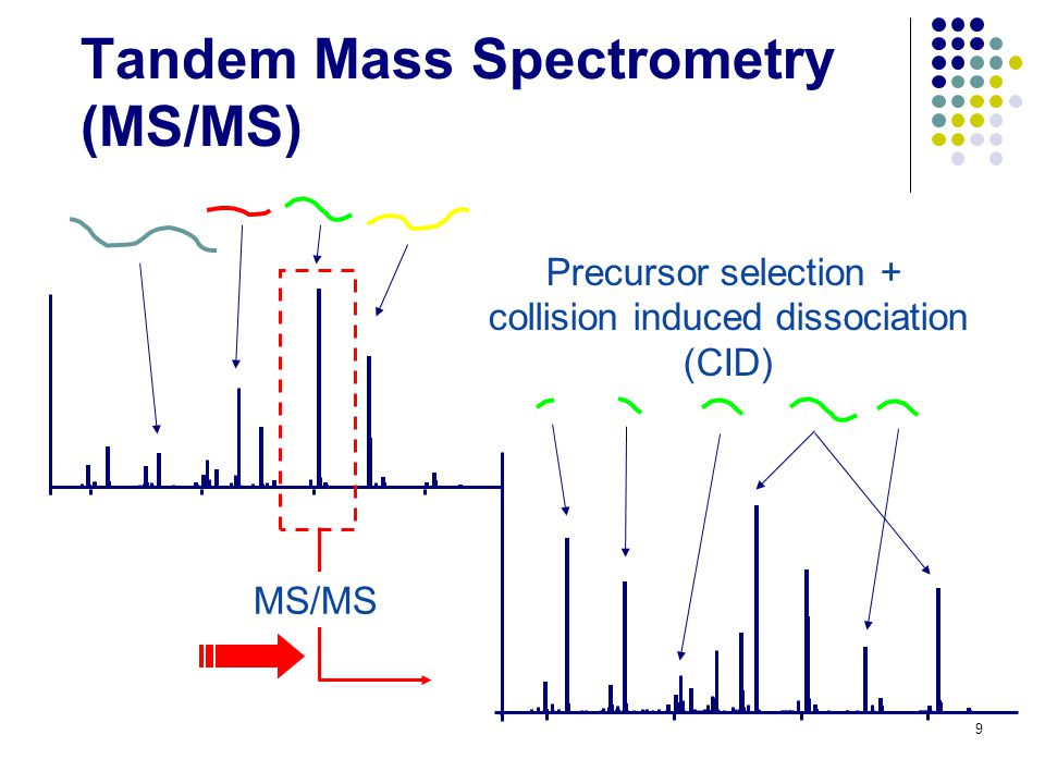 Why Tandem Mass Spectrometry.