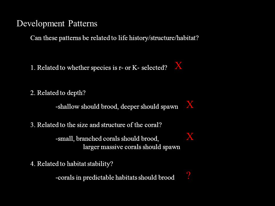 Development Patterns Can these patterns be related to life history/structure/habitat.