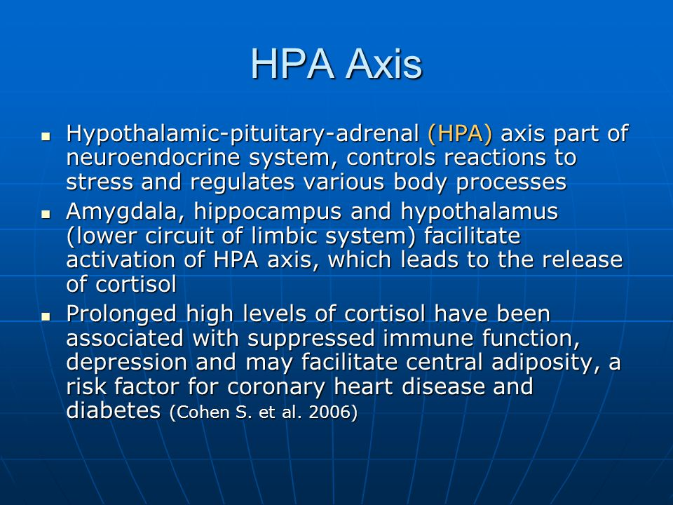 HPA Axis Hypothalamic-pituitary-adrenal (HPA) axis part of neuroendocrine system, controls reactions to stress and regulates various body processes Hypothalamic-pituitary-adrenal (HPA) axis part of neuroendocrine system, controls reactions to stress and regulates various body processes Amygdala, hippocampus and hypothalamus (lower circuit of limbic system) facilitate activation of HPA axis, which leads to the release of cortisol Amygdala, hippocampus and hypothalamus (lower circuit of limbic system) facilitate activation of HPA axis, which leads to the release of cortisol Prolonged high levels of cortisol have been associated with suppressed immune function, depression and may facilitate central adiposity, a risk factor for coronary heart disease and diabetes (Cohen S.