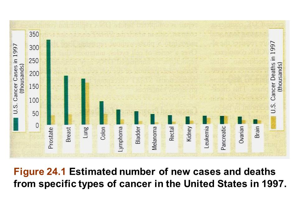 Figure 24.1 Estimated number of new cases and deaths from specific types of cancer in the United States in 1997.