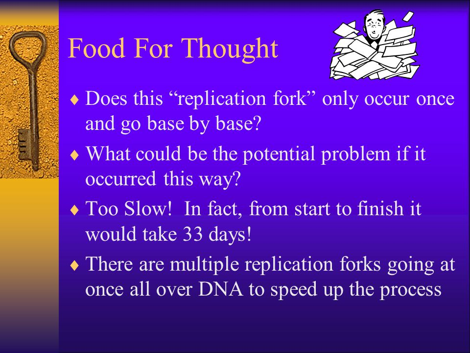 Food For Thought  Does this replication fork only occur once and go base by base.