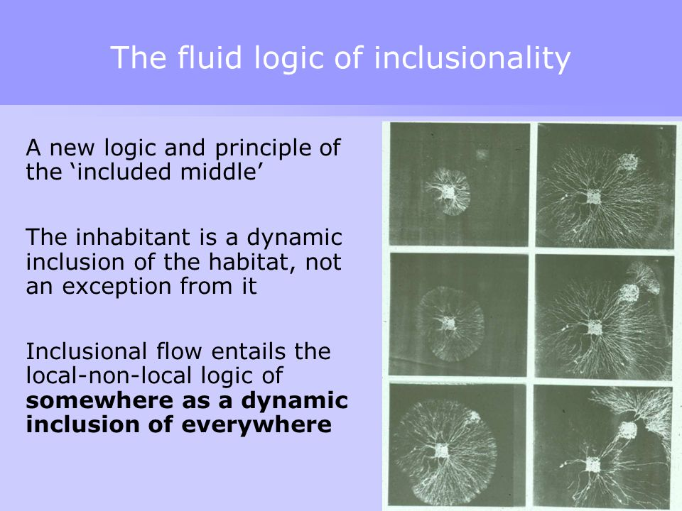 The fluid logic of inclusionality A new logic and principle of the 'included middle' The inhabitant is a dynamic inclusion of the habitat, not an exception from it Inclusional flow entails the local-non-local logic of somewhere as a dynamic inclusion of everywhere