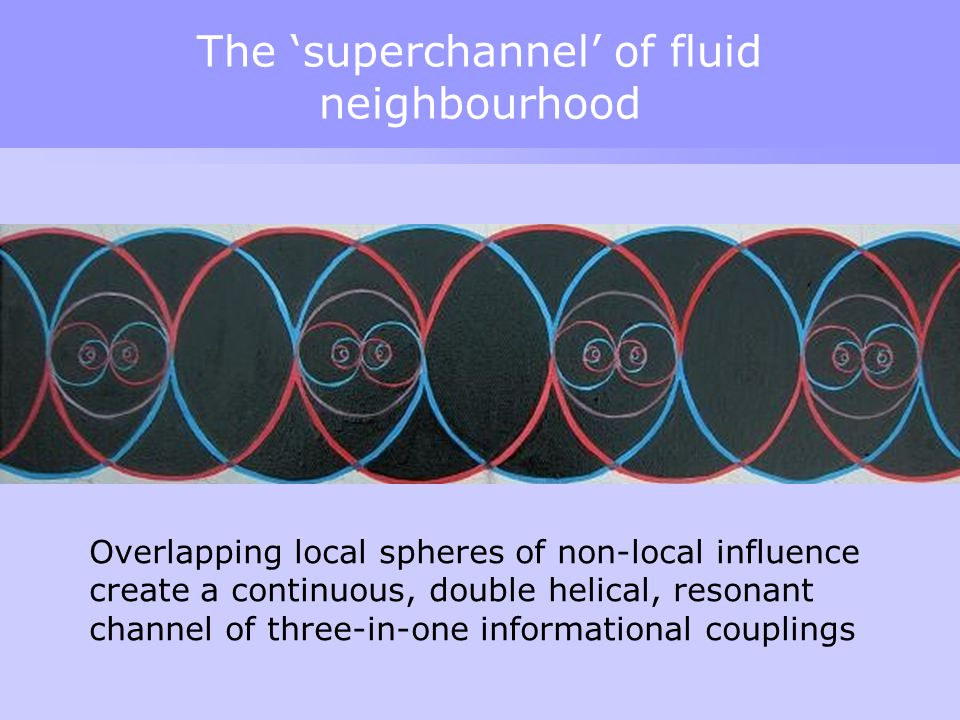 The 'superchannel' of fluid neighbourhood Overlapping local spheres of non-local influence create a continuous, double helical, resonant channel of th