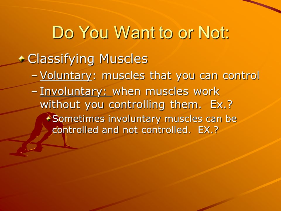 Do You Want to or Not: Classifying Muscles –Voluntary: muscles that you can control –Involuntary: when muscles work without you controlling them. Ex.?