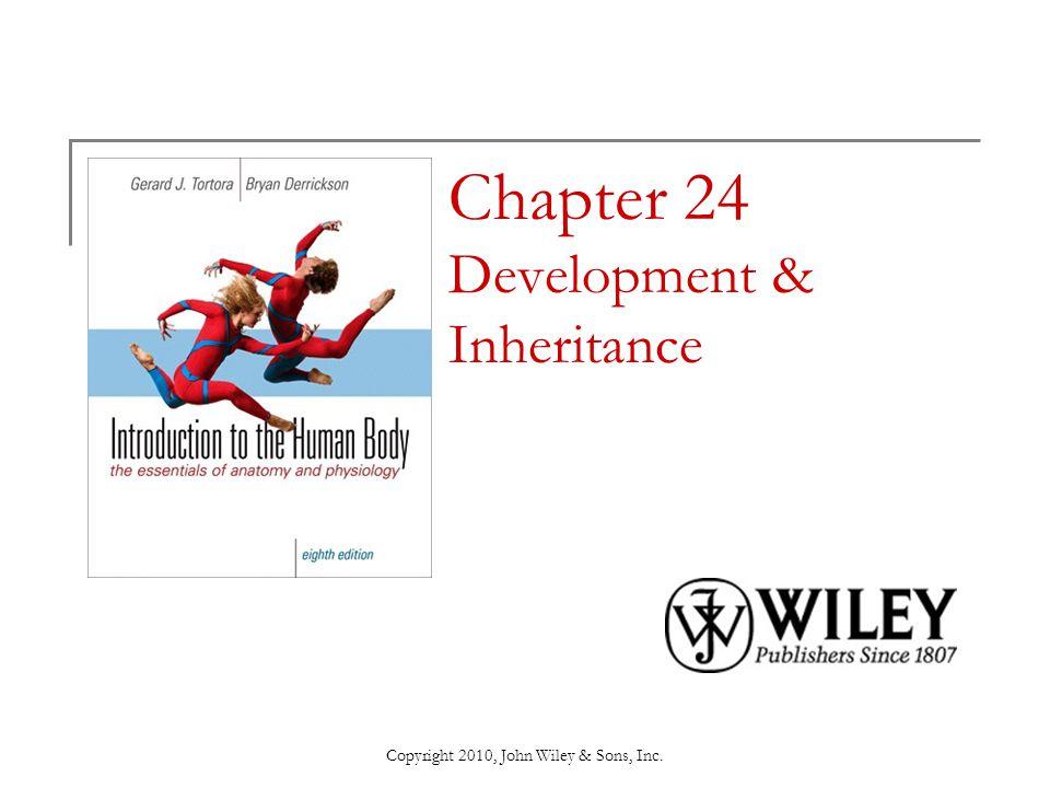 Copyright 2010, John Wiley & Sons, Inc. Chapter 24 Development & Inheritance