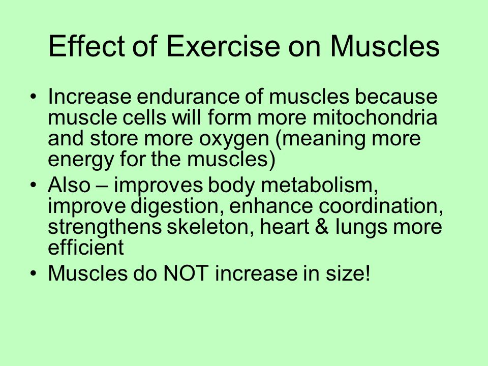 Effect of Exercise on Muscles Increase endurance of muscles because muscle cells will form more mitochondria and store more oxygen (meaning more energy for the muscles) Also – improves body metabolism, improve digestion, enhance coordination, strengthens skeleton, heart & lungs more efficient Muscles do NOT increase in size!