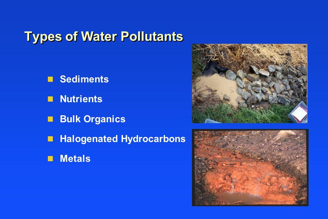 Types of Water Pollutants n Sediments n Nutrients n Bulk Organics n Halogenated Hydrocarbons n Metals