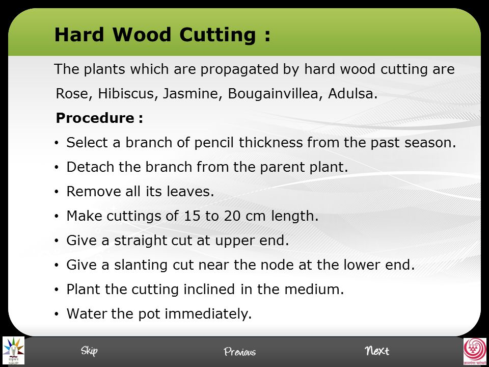 The plants which are propagated by hard wood cutting are Rose, Hibiscus, Jasmine, Bougainvillea, Adulsa. Procedure : Select a branch of pencil thickne