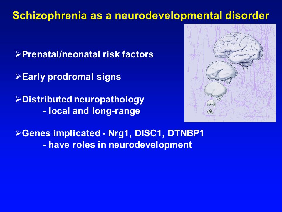  Prenatal/neonatal risk factors  Early prodromal signs  Distributed neuropathology - local and long-range  Genes implicated - Nrg1, DISC1, DTNBP1 - have roles in neurodevelopment Schizophrenia as a neurodevelopmental disorder