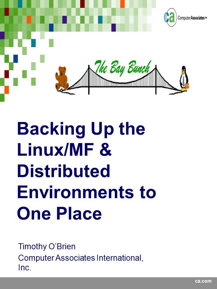 ca.com Timothy O'Brien Computer Associates International, Inc.