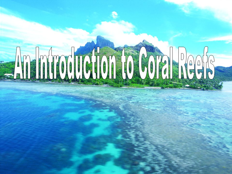 Coral is Picky Very specific habitats:  Temperature: 73-75  F  Depth: Less than 80 ft to 230 feet  Salinity: Normal salt levels (35ppt)  Light: Zooxanthellae need light to survive  Sedimentation: Being covered with silt interferes with photosynthesis  Desiccation: being exposed to air.