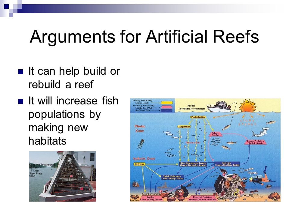 Arguments for Artificial Reefs It can help build or rebuild a reef It will increase fish populations by making new habitats