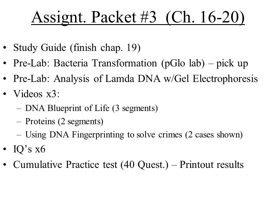 Assignt. Packet #3 (Ch. 16-20) Study Guide (finish chap.