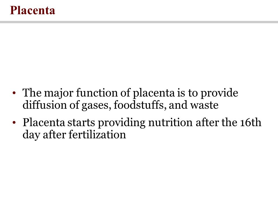 Placenta The major function of placenta is to provide diffusion of gases, foodstuffs, and waste Placenta starts providing nutrition after the 16th day after fertilization