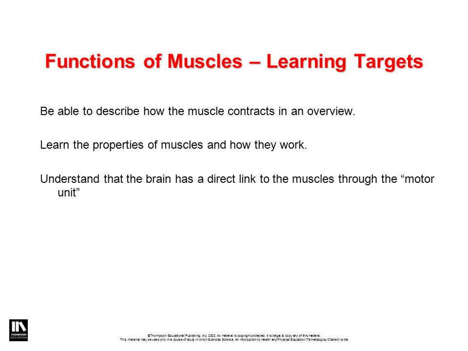 Functions of Muscles – Learning Targets Be able to describe how the muscle contracts in an overview.