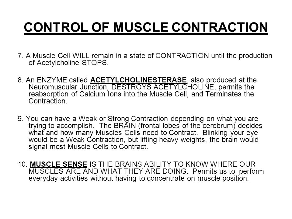 CONTROL OF MUSCLE CONTRACTION 7.