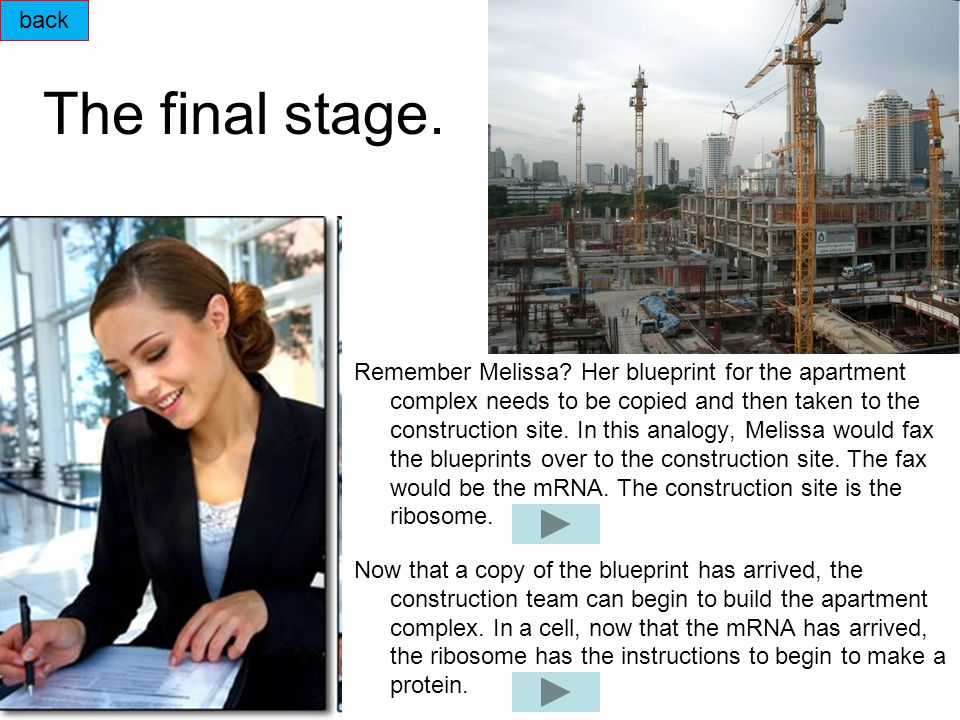 The final stage.Remember Melissa.