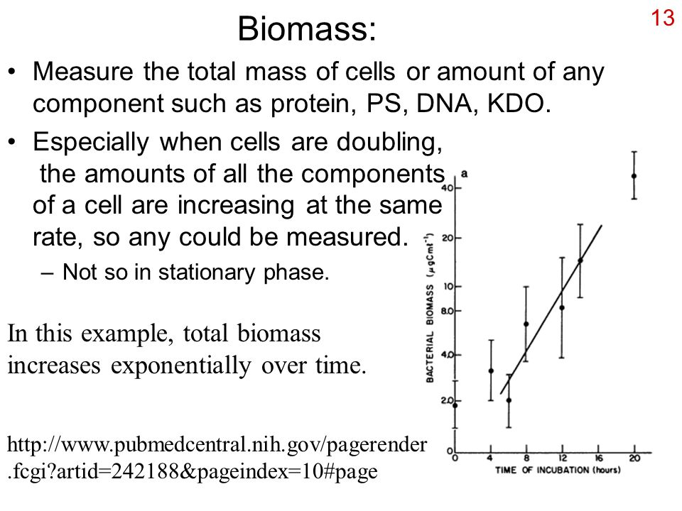 13 Biomass: Measure the total mass of cells or amount of any component such as protein, PS, DNA, KDO.