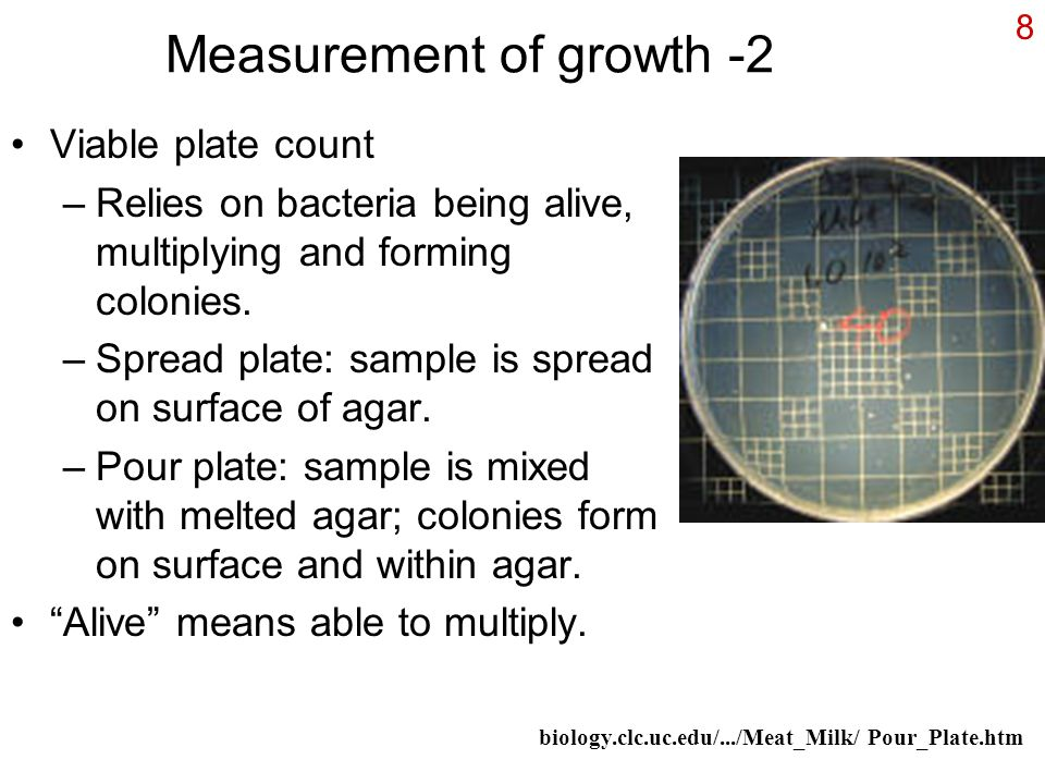 8 Measurement of growth -2 Viable plate count –Relies on bacteria being alive, multiplying and forming colonies.