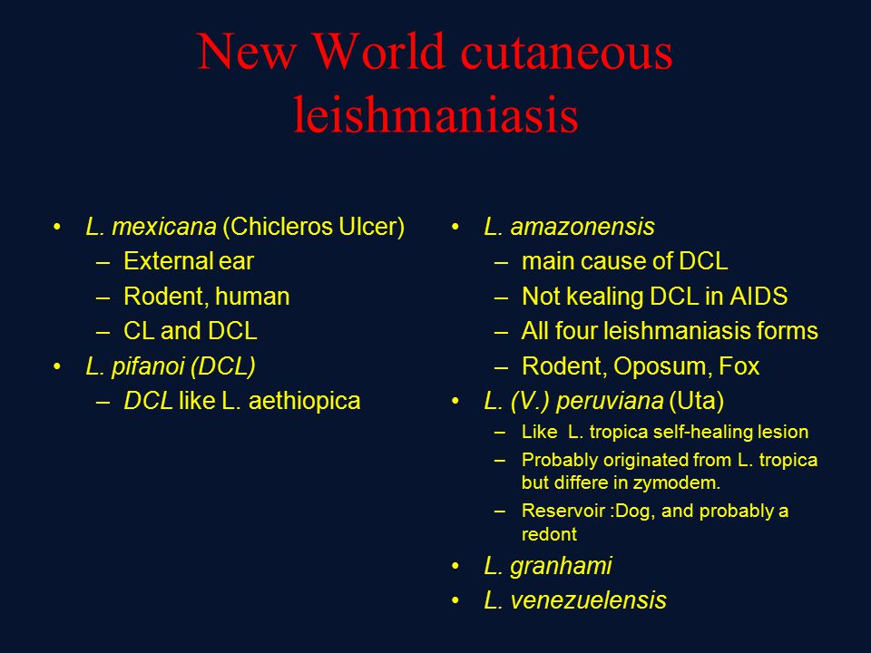 New World cutaneous leishmaniasis L. mexicana (Chicleros Ulcer) –External ear –Rodent, human –CL and DCL L. pifanoi (DCL) –DCL like L. aethiopica L. a