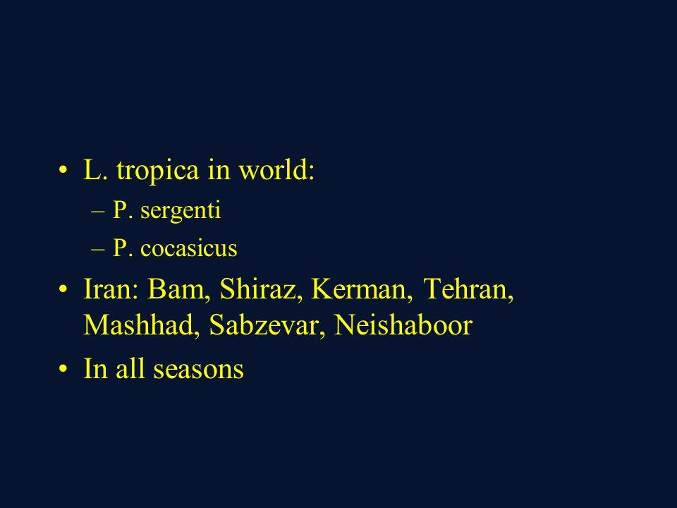 L. tropica in world: –P. sergenti –P. cocasicus Iran: Bam, Shiraz, Kerman, Tehran, Mashhad, Sabzevar, Neishaboor In all seasons
