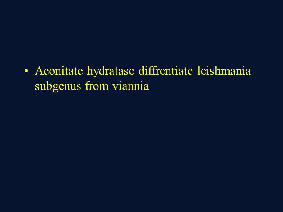 Aconitate hydratase diffrentiate leishmania subgenus from viannia