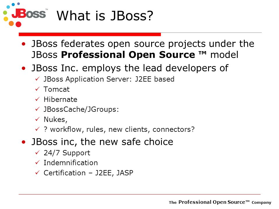The Professional Open Source™ Company What is JBoss.