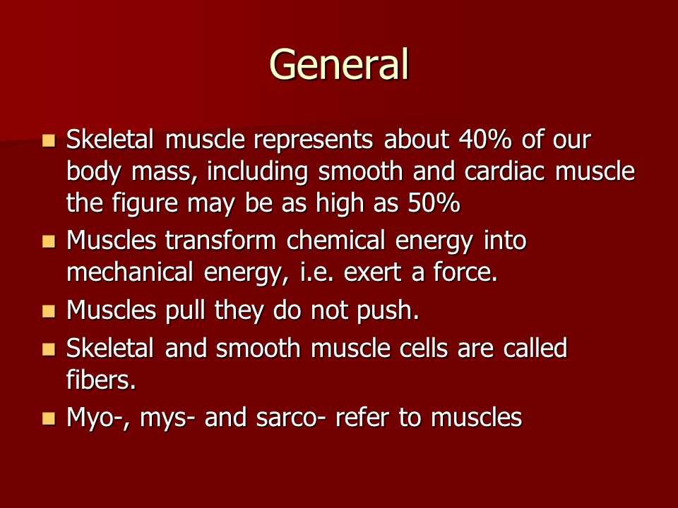 General Skeletal muscle represents about 40% of our body mass, including smooth and cardiac muscle the figure may be as high as 50% Skeletal muscle re