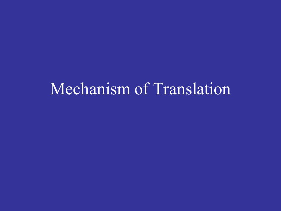 Translation generates proteins according to the instructions read from messenger RNA (mRNA).