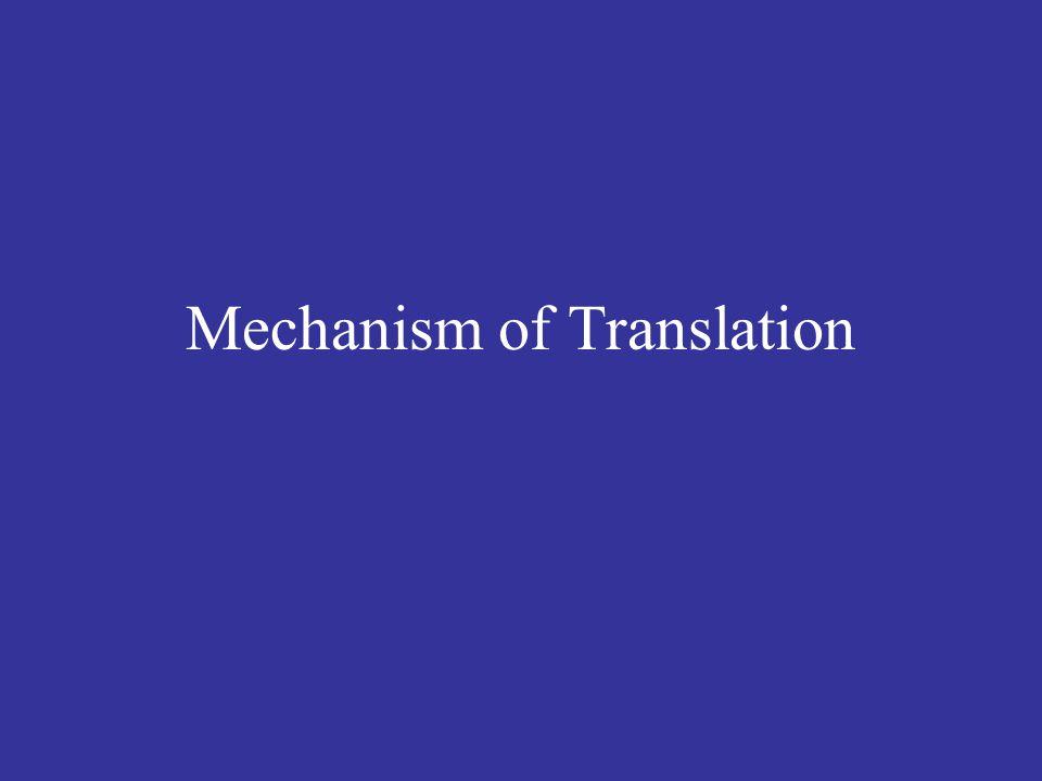 Sonenberg et al.eds Translational Control of Gene Expression (2000) p.
