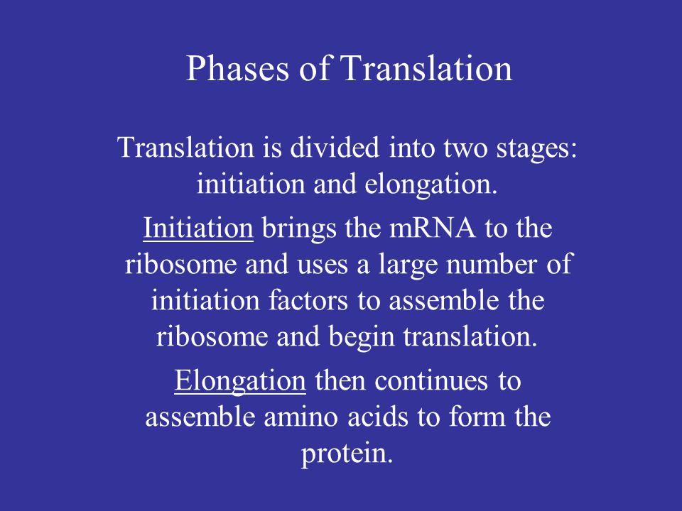 Sonenberg et al., eds., Translational Control of Gene Expression (2000), p.