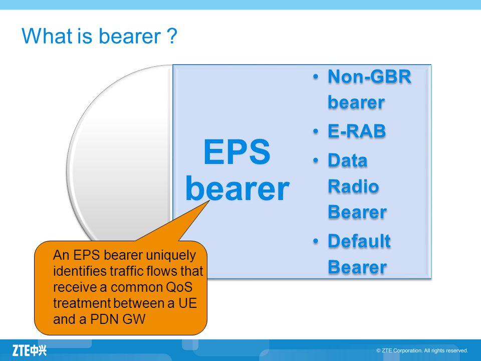EPS Bearer Service Architecture