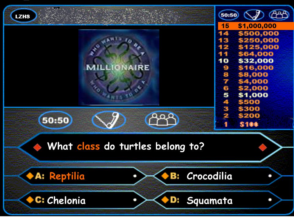 LZHS A number and a colon 15 $1,000,000 Answer Chelonia What class do turtles belong to? ReptiliaCrocodilia Squamata