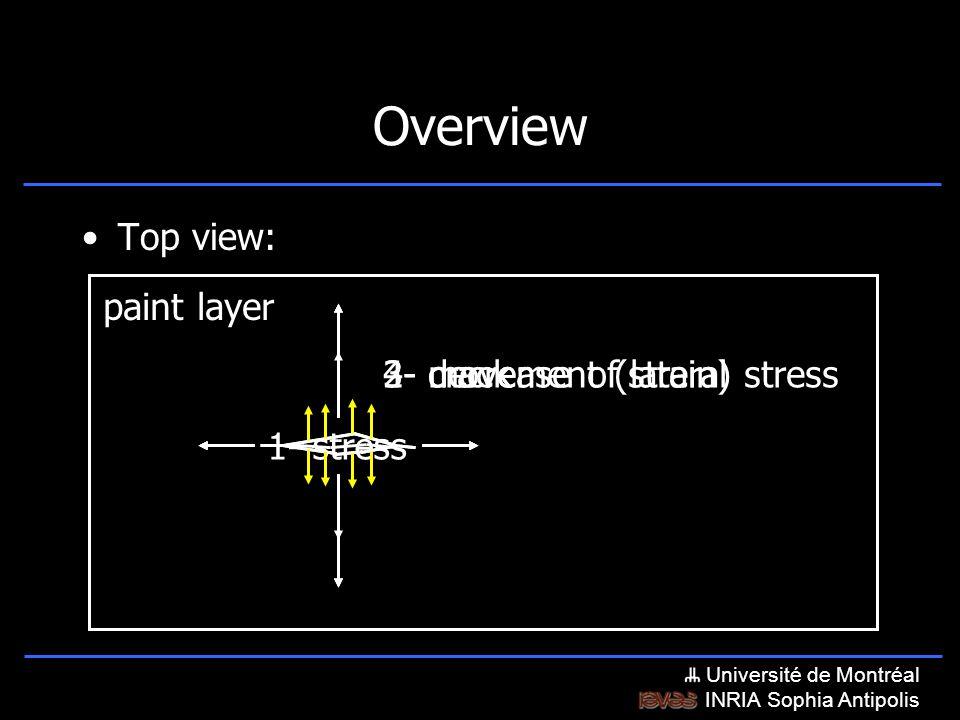 Université de Montréal INRIA Sophia Antipolis 1- stress 4- decrease of lateral stress 3- movement (strain)2- crack Overview Top view: paint layer