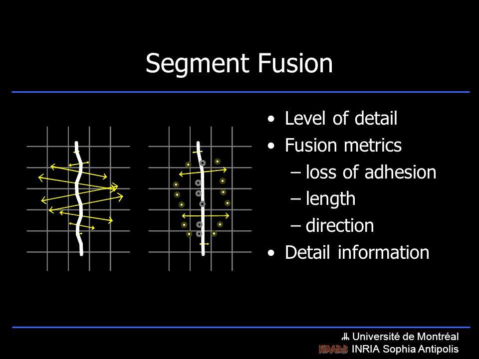 Université de Montréal INRIA Sophia Antipolis Level of detail Fusion metrics –loss of adhesion –length –direction Segment Fusion Detail information