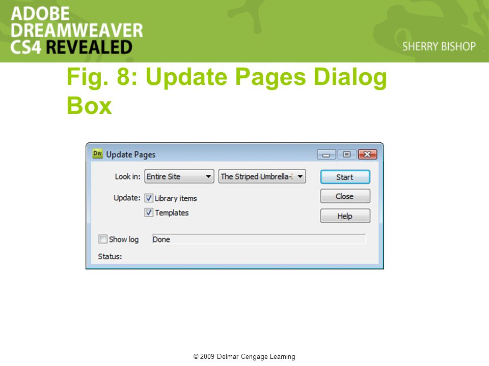© 2009 Delmar Cengage Learning Fig. 8: Update Pages Dialog Box