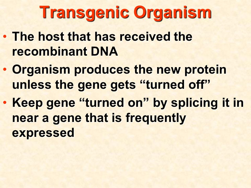 Transgenic Organism The host that has received the recombinant DNAThe host that has received the recombinant DNA Organism produces the new protein unless the gene gets turned off Organism produces the new protein unless the gene gets turned off Keep gene turned on by splicing it in near a gene that is frequently expressedKeep gene turned on by splicing it in near a gene that is frequently expressed