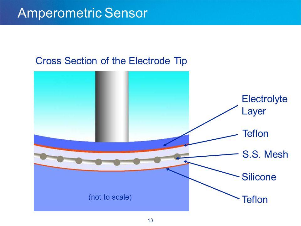 13 Amperometric Sensor Teflon Silicone S.S.