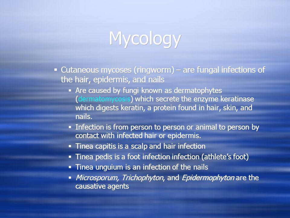 Cutaneous mycoses