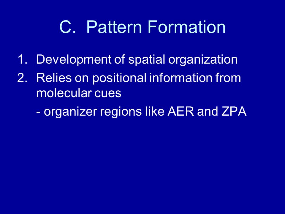 C. Pattern Formation 1.Development of spatial organization 2.Relies on positional information from molecular cues - organizer regions like AER and ZPA