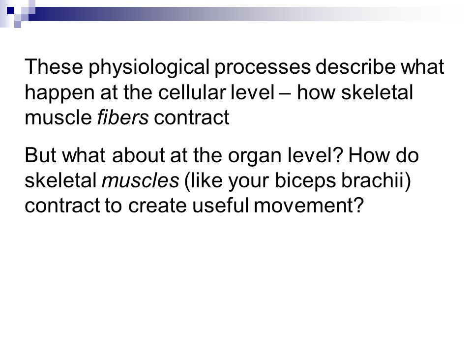 These physiological processes describe what happen at the cellular level – how skeletal muscle fibers contract But what about at the organ level.