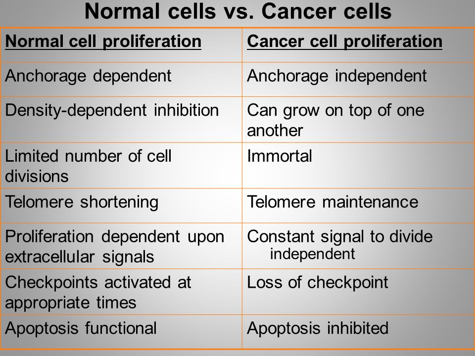 Normal cells vs. Cancer cells Normal cell proliferationCancer cell proliferation Anchorage dependentAnchorage independent Density-dependent inhibition