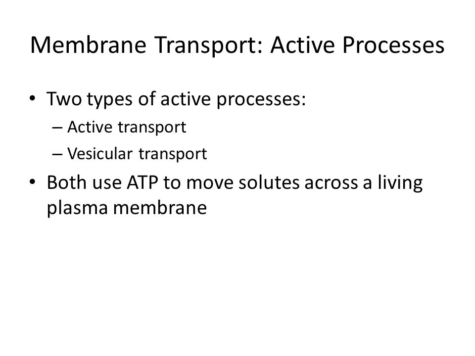 Membrane Transport: Active Processes Two types of active processes: – Active transport – Vesicular transport Both use ATP to move solutes across a liv