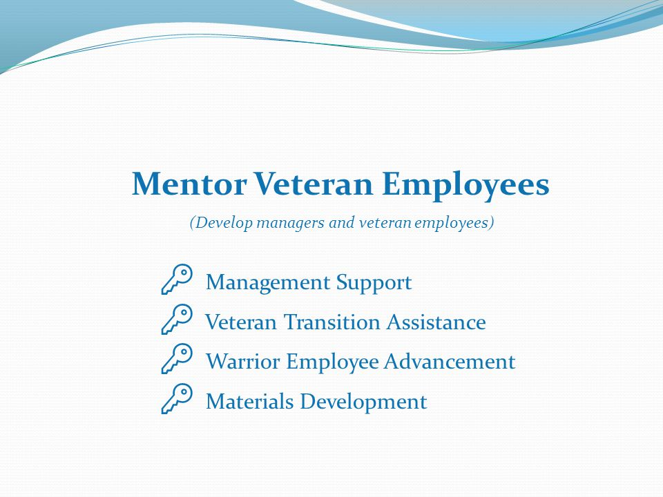 Mentor Veteran Employees (Develop managers and veteran employees)  Management Support  Veteran Transition Assistance  Warrior Employee Advancement  Materials Development