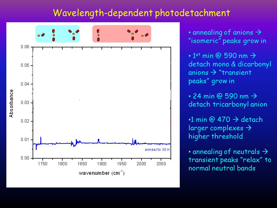 Wavelength-dependent photodetachment annealing of anions  isomeric peaks grow in 1 st min @ 590 nm  detach mono & dicarbonyl anions  transient peaks grow in 24 min @ 590 nm  detach tricarbonyl anion 1 min @ 470  detach larger complexes  higher threshold annealing of neutrals  transient peaks relax to normal neutral bands