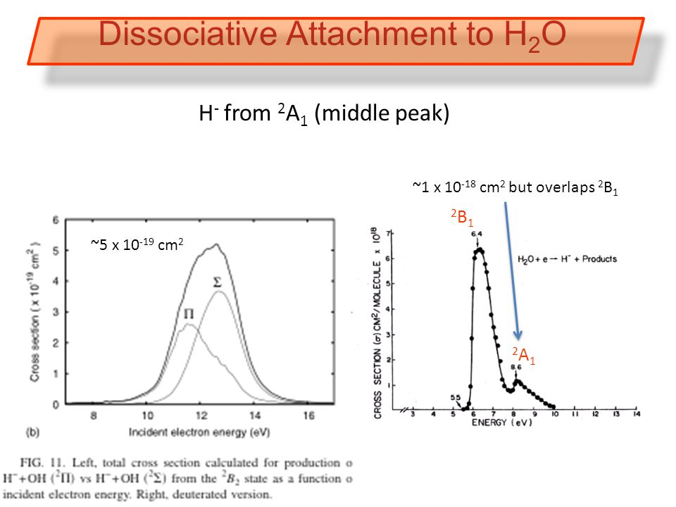 2B12B1 2A12A1 H - from 2 A 1 (middle peak) Dissociative Attachment to H 2 O ~5 x 10 -19 cm 2 ~1 x 10 -18 cm 2 but overlaps 2 B 1