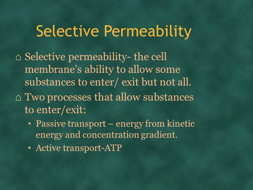 Selective Permeability ⌂ Selective permeability- the cell membrane's ability to allow some substances to enter/ exit but not all.